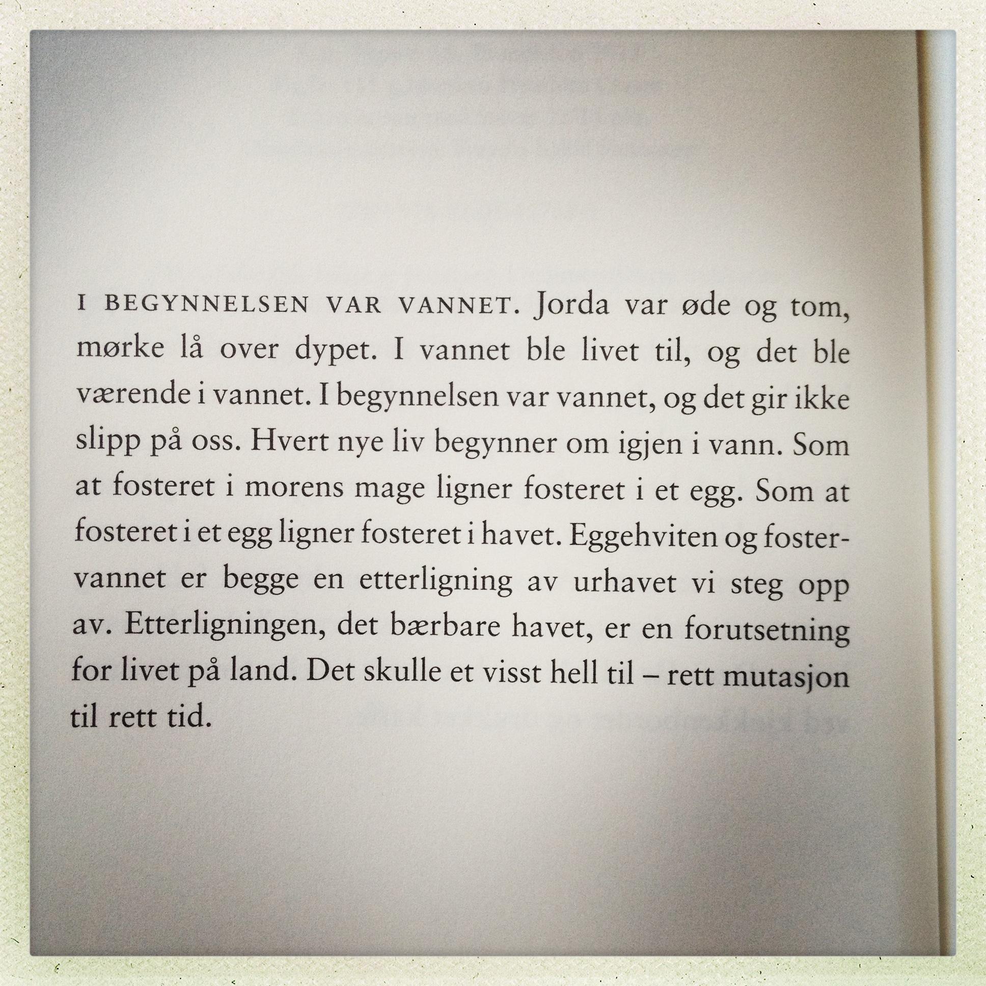 norske damer har seg selv å takke Kristiansund
