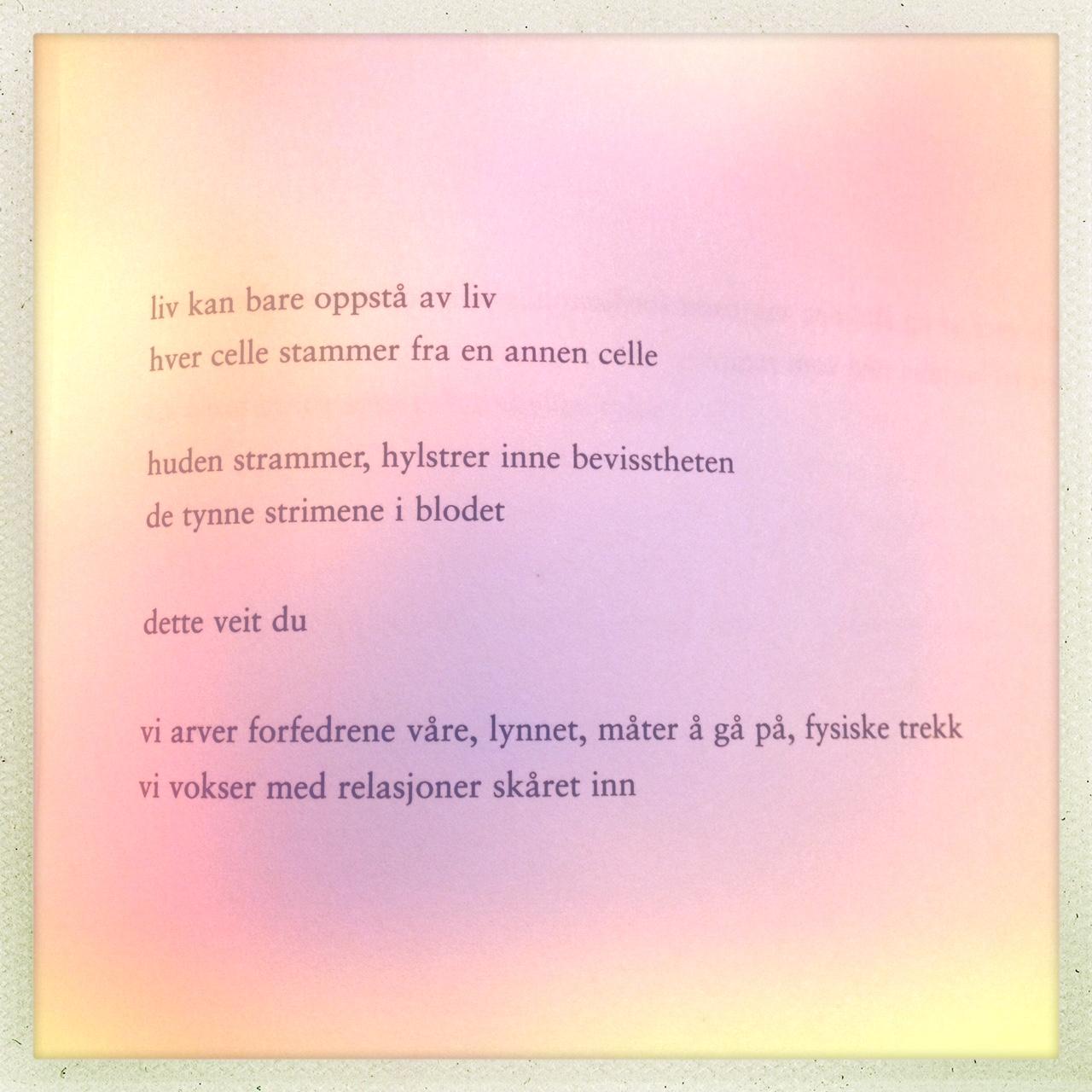 romantiske dikt til kjæresten